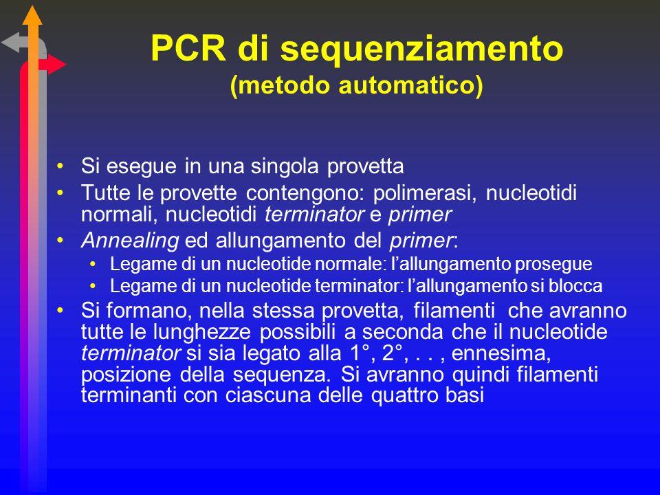 PCR di sequenziamento (metodo automatico) Si esegue in una singola provetta Tutte le provette contengono: polimerasi, nucleotidi normali, nucleotidi t