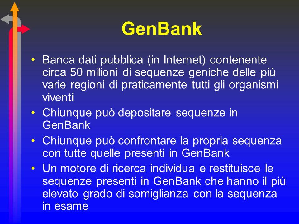 GenBank Banca dati pubblica (in Internet) contenente circa 50 milioni di sequenze geniche delle più varie regioni di praticamente tutti gli organismi