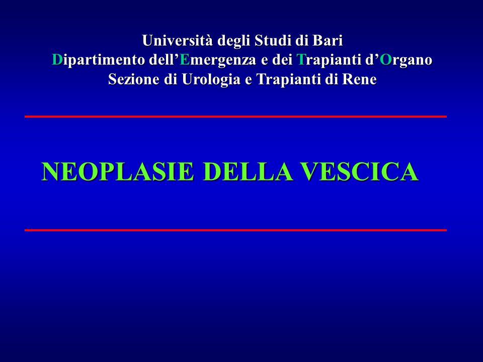 NEOPLASIE DELLA VESCICA Università degli Studi di Bari Dipartimento dell'Emergenza e dei Trapianti d'Organo Sezione di Urologia e Trapianti di Rene