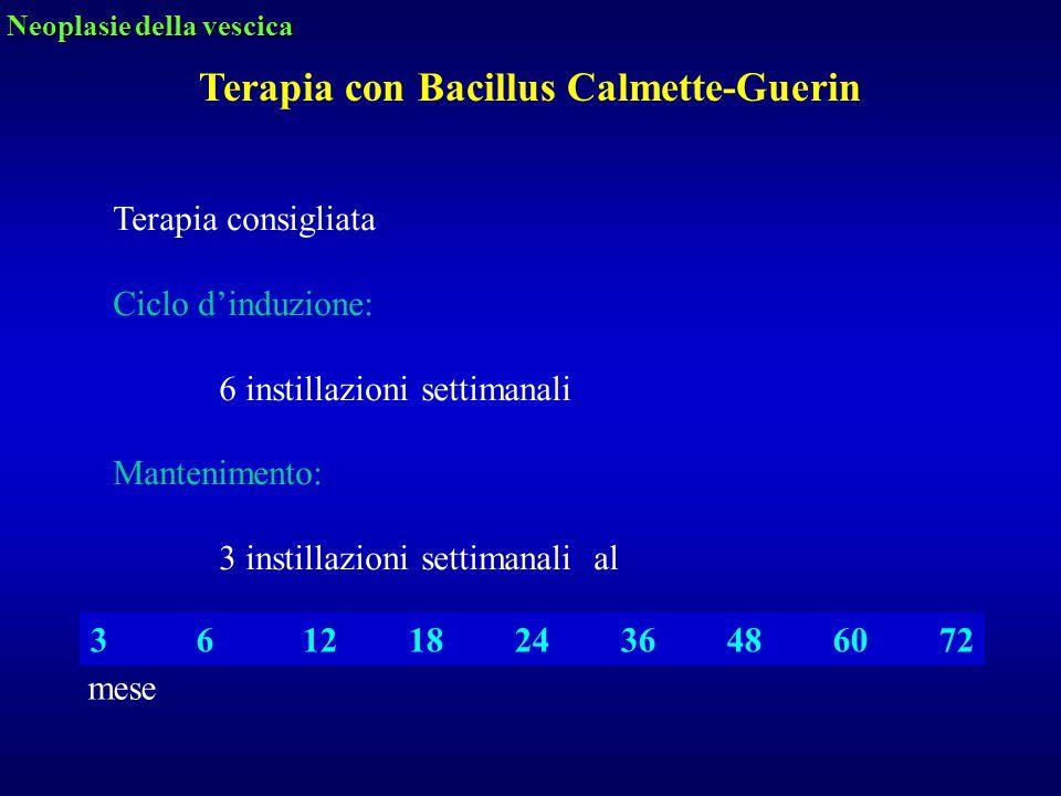 Terapia consigliata Ciclo d'induzione: 6 instillazioni settimanali Mantenimento: 3 instillazioni settimanali al 3612182436486072 Terapia con Bacillus