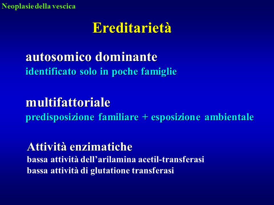 Ereditarietà autosomico dominante identificato solo in poche famiglie multifattoriale predisposizione familiare + esposizione ambientale Neoplasie del