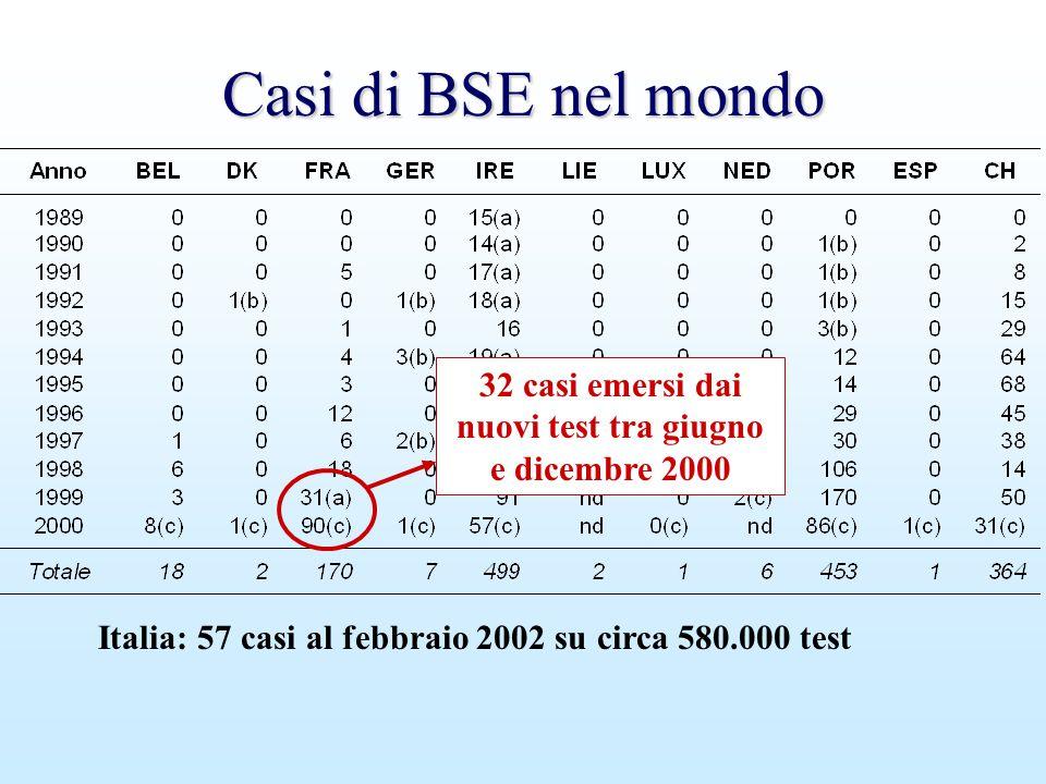Casi di BSE nel mondo Italia: 57 casi al febbraio 2002 su circa 580.000 test 32 casi emersi dai nuovi test tra giugno e dicembre 2000