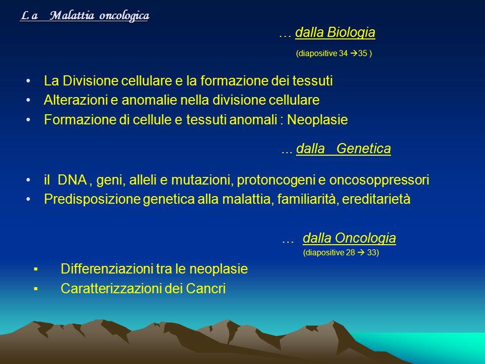 L a Malattia oncologica … dalla Biologia (diapositive 34  35 ) La Divisione cellulare e la formazione dei tessuti Alterazioni e anomalie nella divisi