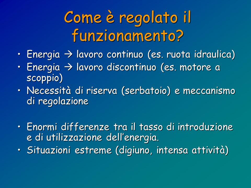 Come è regolato il funzionamento. Energia  lavoro continuo (es.