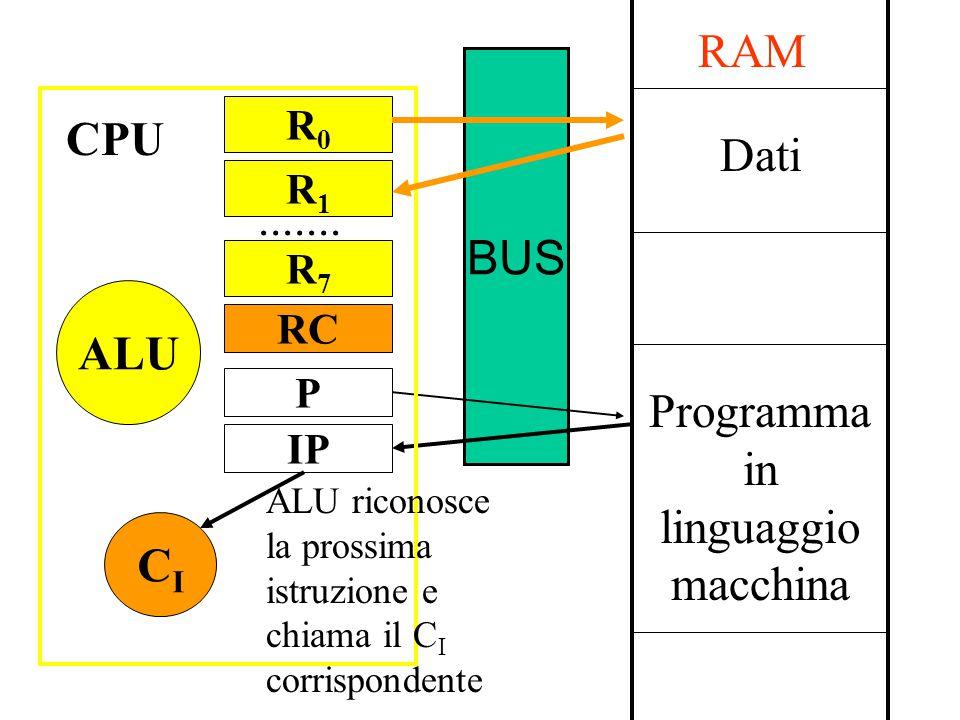 BUS Dati Programma in linguaggio macchina RAM P IP CICI CPU R0R0....... ALU ALU riconosce la prossima istruzione e chiama il C I corrispondente R1R1 R