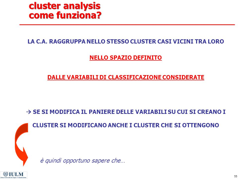 55 cluster analysis come funziona.LA C.A.
