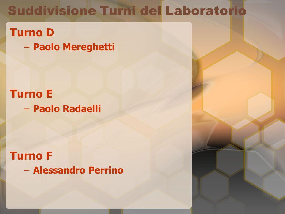 Suddivisione Turni del Laboratorio Turno D –Paolo Mereghetti Turno E –Paolo Radaelli Turno F –Alessandro Perrino