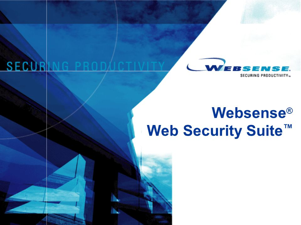 Websense ® Web Security Suite ™