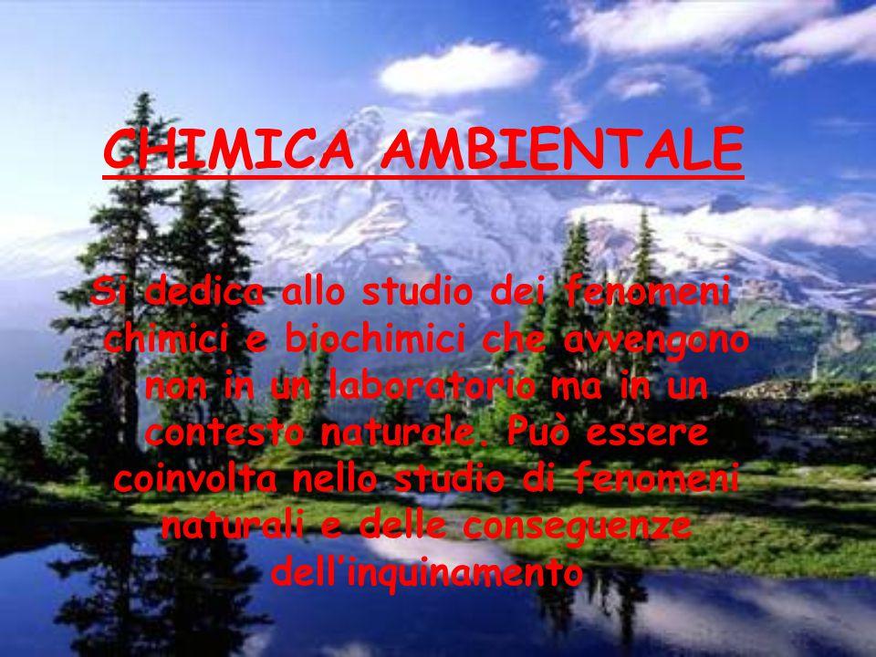 CHIMICA AMBIENTALE Si dedica allo studio dei fenomeni chimici e biochimici che avvengono non in un laboratorio ma in un contesto naturale.