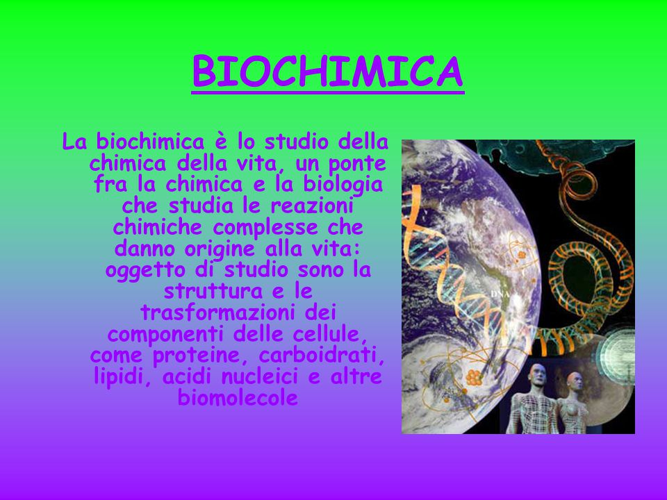 BIOCHIMICA La biochimica è lo studio della chimica della vita, un ponte fra la chimica e la biologia che studia le reazioni chimiche complesse che danno origine alla vita: oggetto di studio sono la struttura e le trasformazioni dei componenti delle cellule, come proteine, carboidrati, lipidi, acidi nucleici e altre biomolecole