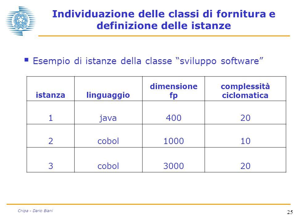 """25 Cnipa - Dario Biani Individuazione delle classi di fornitura e definizione delle istanze  Esempio di istanze della classe """"sviluppo software"""" ista"""