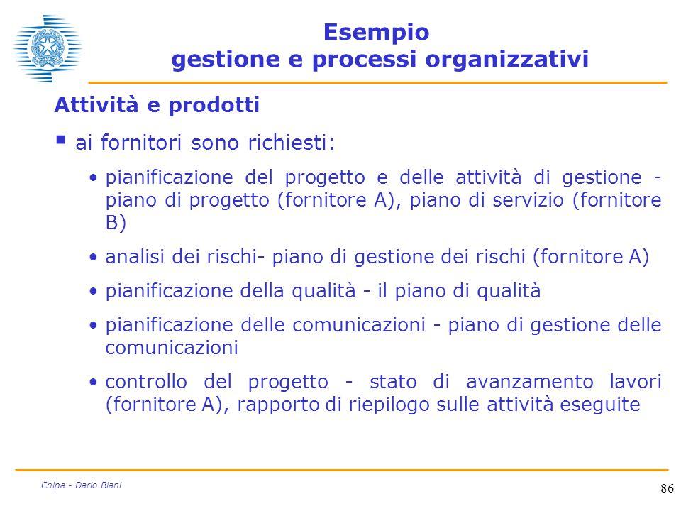 86 Cnipa - Dario Biani Esempio gestione e processi organizzativi Attività e prodotti  ai fornitori sono richiesti: pianificazione del progetto e dell