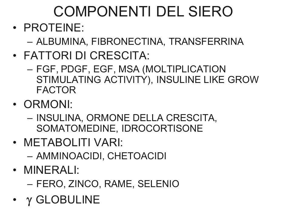 COMPONENTI DEL SIERO PROTEINE: –ALBUMINA, FIBRONECTINA, TRANSFERRINA FATTORI DI CRESCITA: –FGF, PDGF, EGF, MSA (MOLTIPLICATION STIMULATING ACTIVITY),