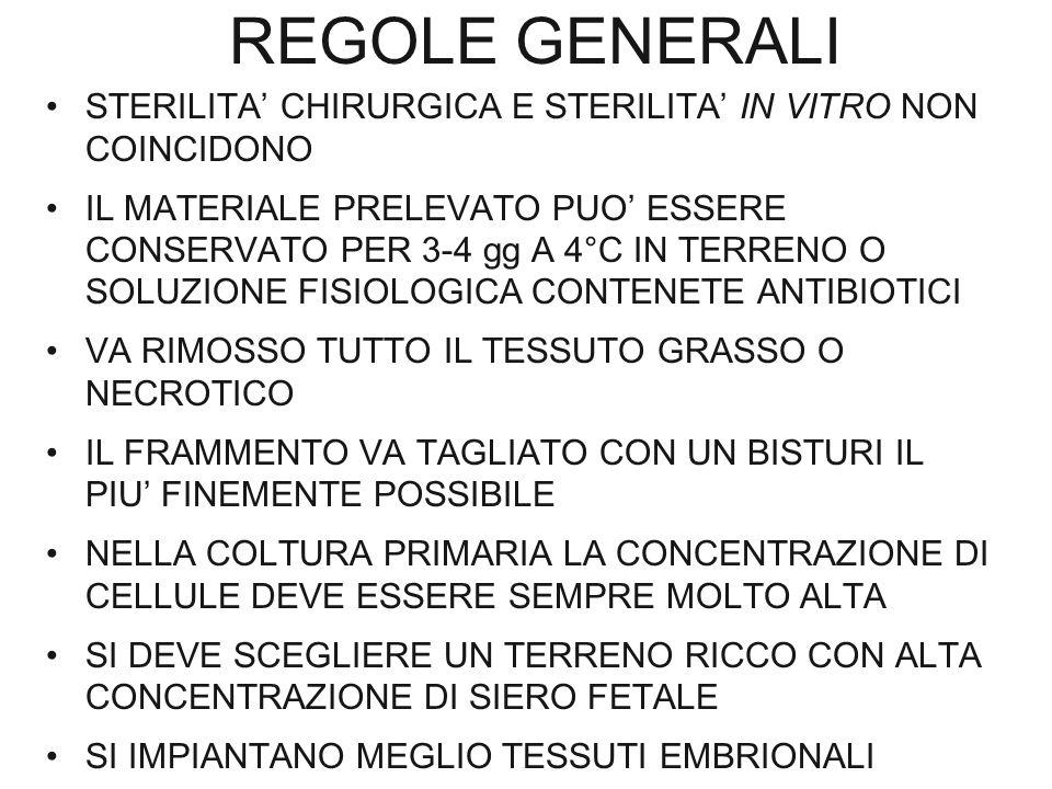 REGOLE GENERALI STERILITA' CHIRURGICA E STERILITA' IN VITRO NON COINCIDONO IL MATERIALE PRELEVATO PUO' ESSERE CONSERVATO PER 3-4 gg A 4°C IN TERRENO O