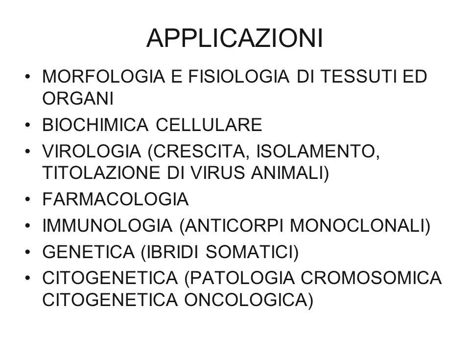 APPLICAZIONI MORFOLOGIA E FISIOLOGIA DI TESSUTI ED ORGANI BIOCHIMICA CELLULARE VIROLOGIA (CRESCITA, ISOLAMENTO, TITOLAZIONE DI VIRUS ANIMALI) FARMACOL