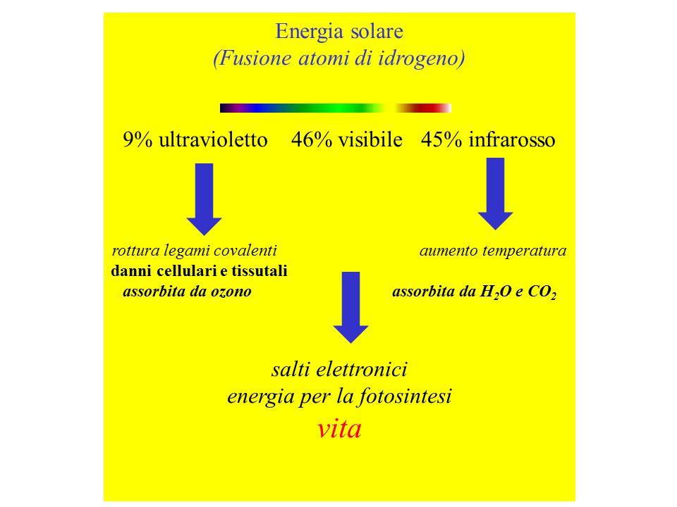 Energia solare (Fusione atomi di idrogeno) 9% ultravioletto 46% visibile 45% infrarosso rottura legami covalenti aumento temperatura danni cellulari e tissutali assorbita da ozono assorbita da H 2 O e CO 2 salti elettronici energia per la fotosintesi vita