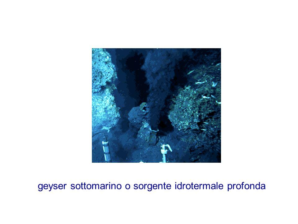 geyser sottomarino o sorgente idrotermale profonda