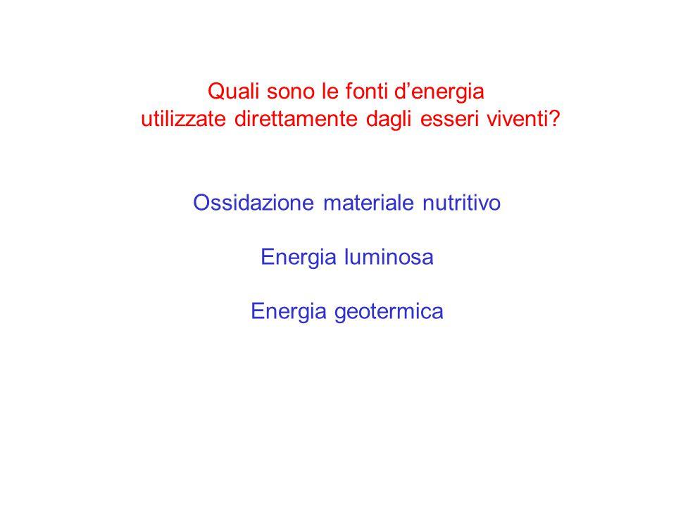 Quali sono le fonti d'energia utilizzate direttamente dagli esseri viventi? Ossidazione materiale nutritivo Energia luminosa Energia geotermica