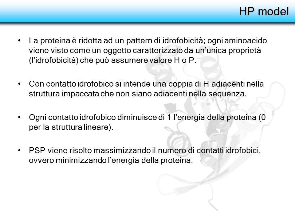 HP model La proteina è ridotta ad un pattern di idrofobicità; ogni aminoacido viene visto come un oggetto caratterizzato da un'unica proprietà (l'idro