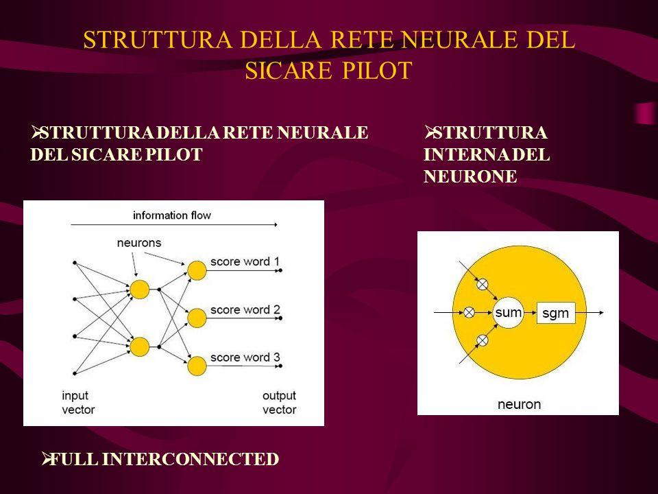 STRUTTURA DELLA RETE NEURALE DEL SICARE PILOT  STRUTTURA DELLA RETE NEURALE DEL SICARE PILOT  STRUTTURA INTERNA DEL NEURONE  FULL INTERCONNECTED