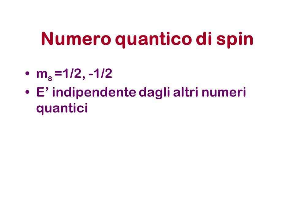 Numero quantico di spin m s =1/2, -1/2 E' indipendente dagli altri numeri quantici