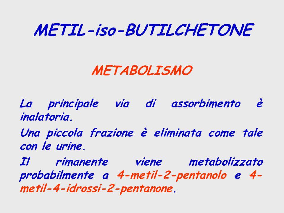 METABOLISMO La principale via di assorbimento è inalatoria. Una piccola frazione è eliminata come tale con le urine. Il rimanente viene metabolizzato