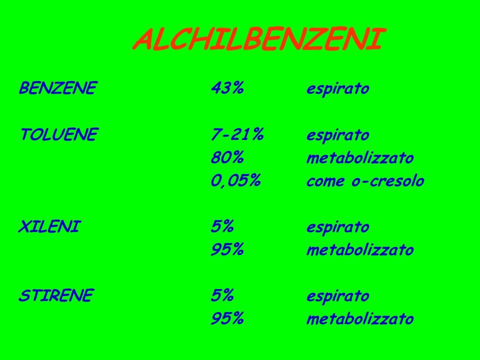 ALCHILBENZENI BENZENE43%espirato TOLUENE7-21%espirato 80%metabolizzato 0,05%come o-cresolo XILENI5%espirato 95%metabolizzato STIRENE5%espirato 95%metabolizzato