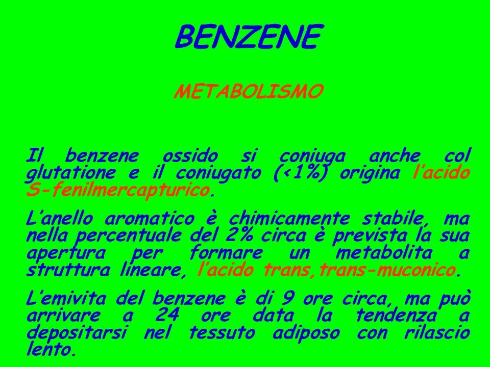 BENZENE METABOLISMO Il benzene ossido si coniuga anche col glutatione e il coniugato (<1%) origina l'acido S-fenilmercapturico. L'anello aromatico è c