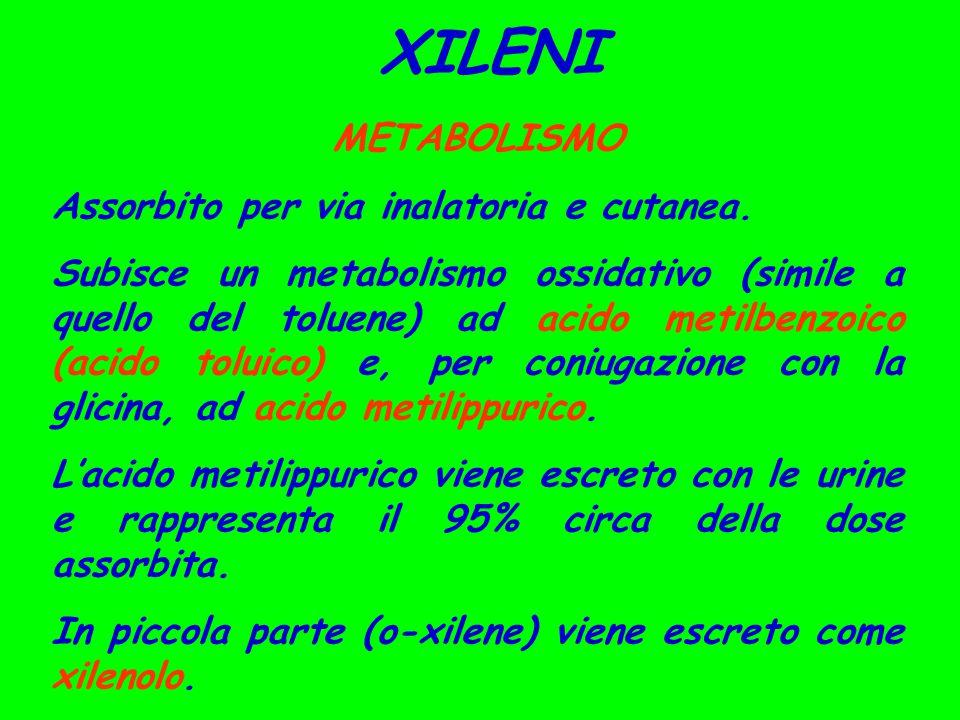 XILENI METABOLISMO Assorbito per via inalatoria e cutanea. Subisce un metabolismo ossidativo (simile a quello del toluene) ad acido metilbenzoico (aci