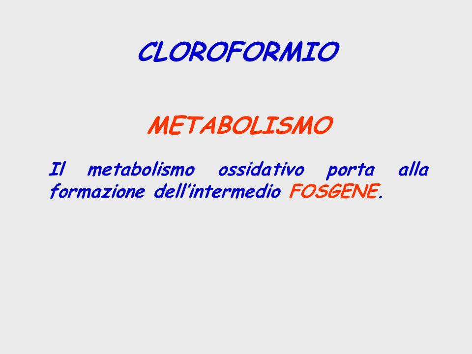 CLOROFORMIO METABOLISMO Il metabolismo ossidativo porta alla formazione dell'intermedio FOSGENE.
