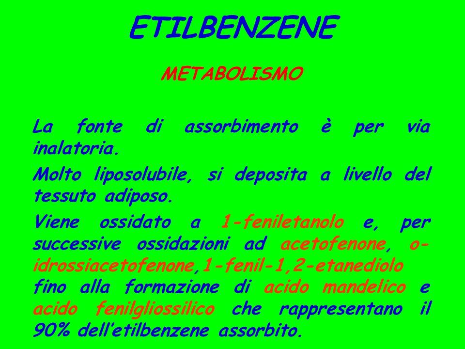 METABOLISMO La fonte di assorbimento è per via inalatoria.