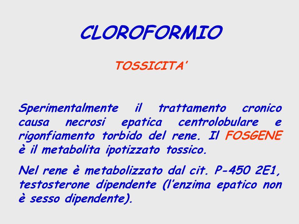 CLOROFORMIO TOSSICITA' Sperimentalmente il trattamento cronico causa necrosi epatica centrolobulare e rigonfiamento torbido del rene. Il FOSGENE è il