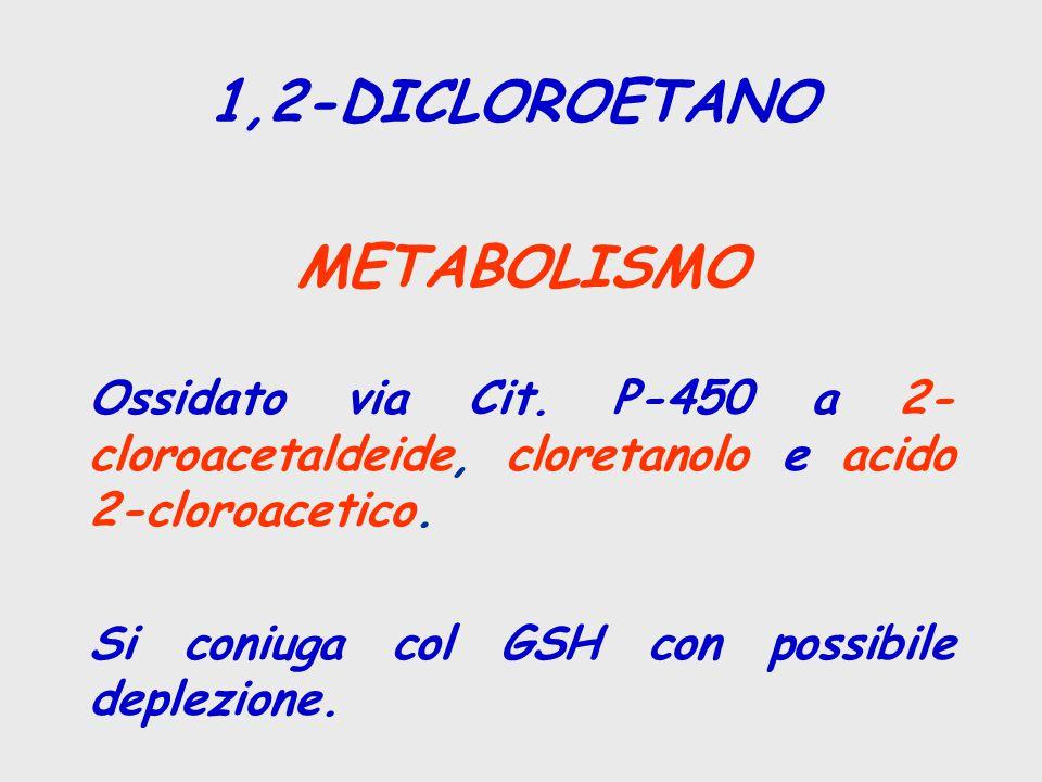 1,2-DICLOROETANO METABOLISMO Ossidato via Cit. P-450 a 2- cloroacetaldeide, cloretanolo e acido 2-cloroacetico. Si coniuga col GSH con possibile deple