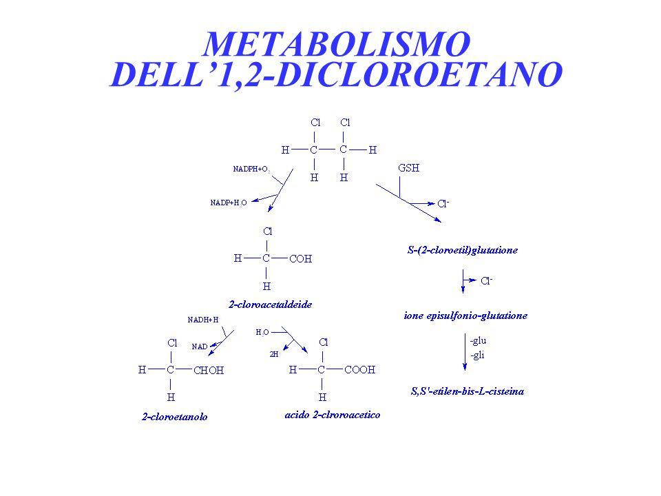 METABOLISMO DELL'1,2-DICLOROETANO