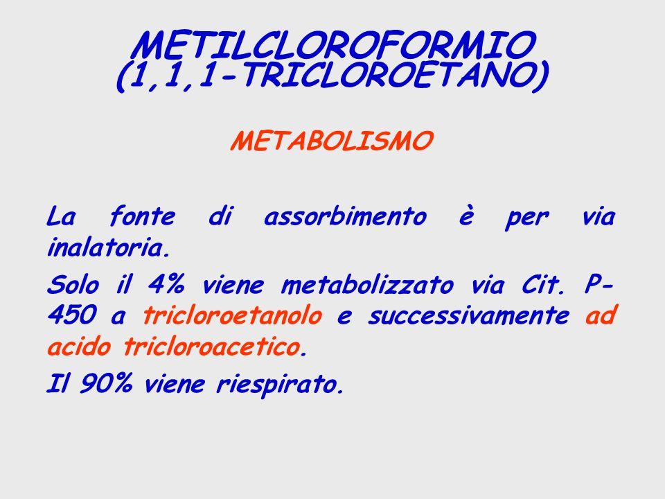 METABOLISMO La fonte di assorbimento è per via inalatoria. Solo il 4% viene metabolizzato via Cit. P- 450 a tricloroetanolo e successivamente ad acido
