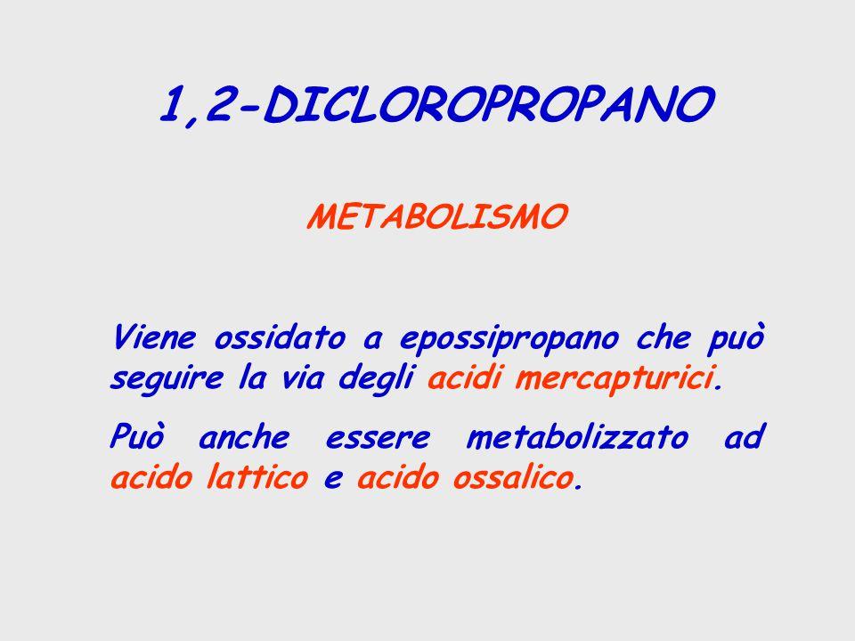 1,2-DICLOROPROPANO METABOLISMO Viene ossidato a epossipropano che può seguire la via degli acidi mercapturici. Può anche essere metabolizzato ad acido