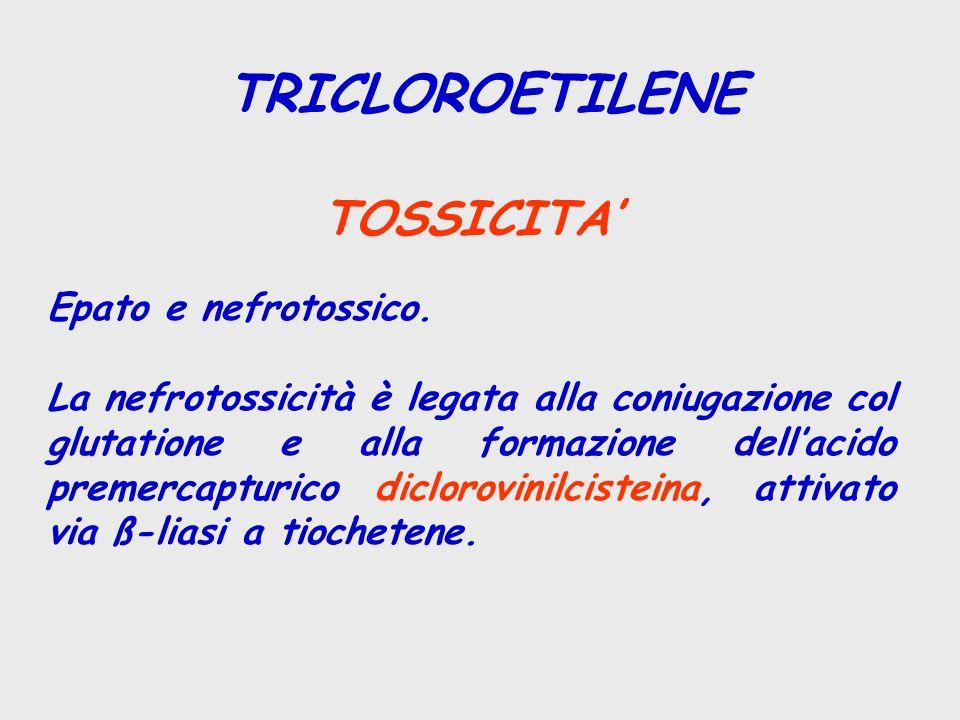 TRICLOROETILENE TOSSICITA' Epato e nefrotossico. La nefrotossicità è legata alla coniugazione col glutatione e alla formazione dell'acido premercaptur