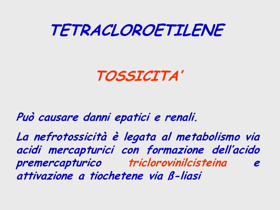 TETRACLOROETILENE TOSSICITA' Può causare danni epatici e renali. La nefrotossicità è legata al metabolismo via acidi mercapturici con formazione dell'