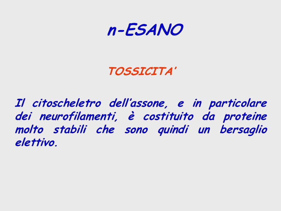 TOSSICITA' Il citoscheletro dell'assone, e in particolare dei neurofilamenti, è costituito da proteine molto stabili che sono quindi un bersaglio elet