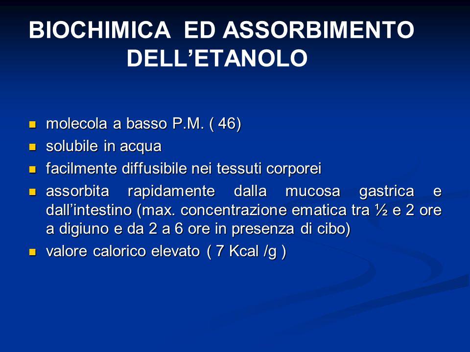 BIOCHIMICA ED ASSORBIMENTO DELL'ETANOLO molecola a basso P.M. ( 46) molecola a basso P.M. ( 46) solubile in acqua solubile in acqua facilmente diffusi