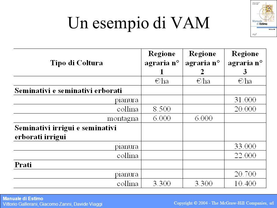 Manuale di Estimo Vittorio Gallerani, Giacomo Zanni, Davide Viaggi Copyright © 2004 - The McGraw-Hill Companies, srl Un esempio di VAM