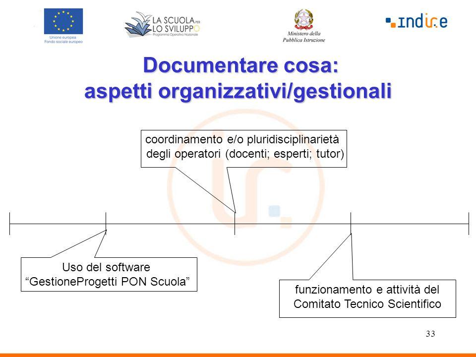 """33 Documentare cosa: aspetti organizzativi/gestionali Documentare cosa: aspetti organizzativi/gestionali Uso del software """"GestioneProgetti PON Scuola"""
