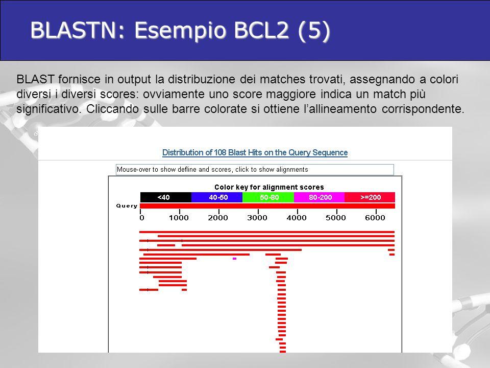 BLASTN: Esempio BCL2 (5)  BLAST fornisce in output la distribuzione dei matches trovati, assegnando a colori diversi i diversi scores: ovviamente uno