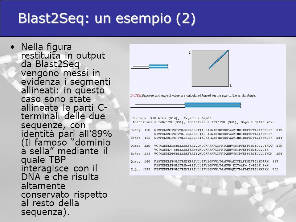 Blast2Seq: un esempio (2)  Nella figura restituita in output da Blast2Seq vengono messi in evidenza i segmenti allineati: in questo caso sono state a