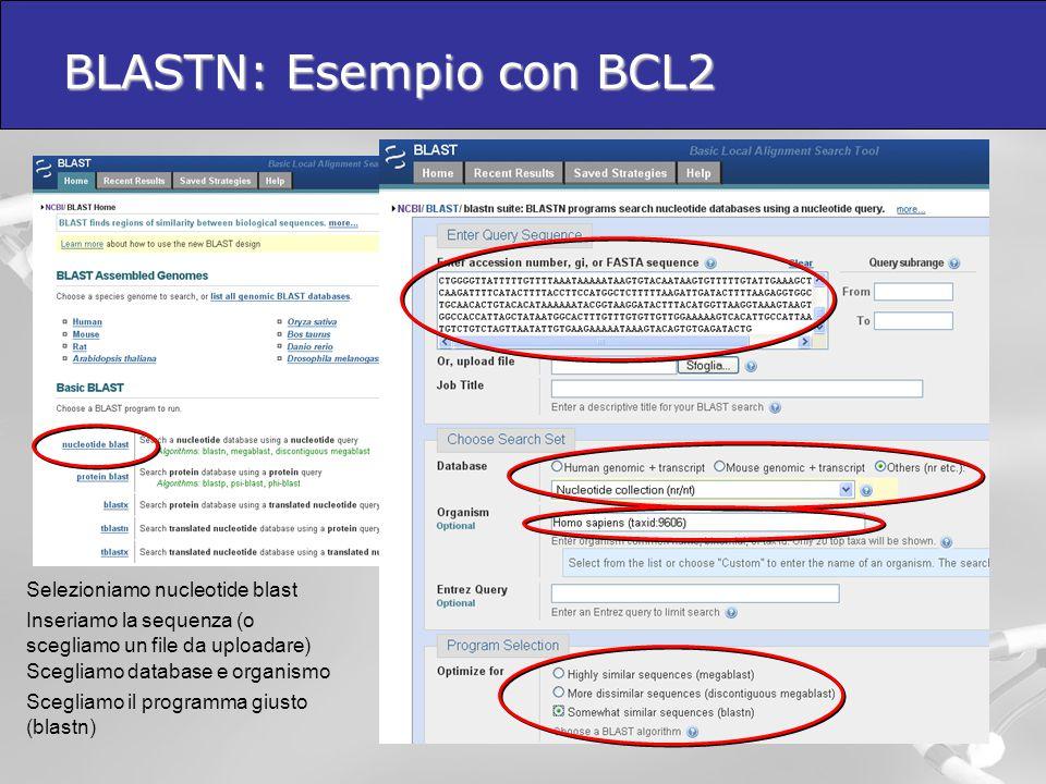 BLASTN: Esempio con BCL2 Selezioniamo nucleotide blast Inseriamo la sequenza (o scegliamo un file da uploadare) Scegliamo database e organismo Scegli