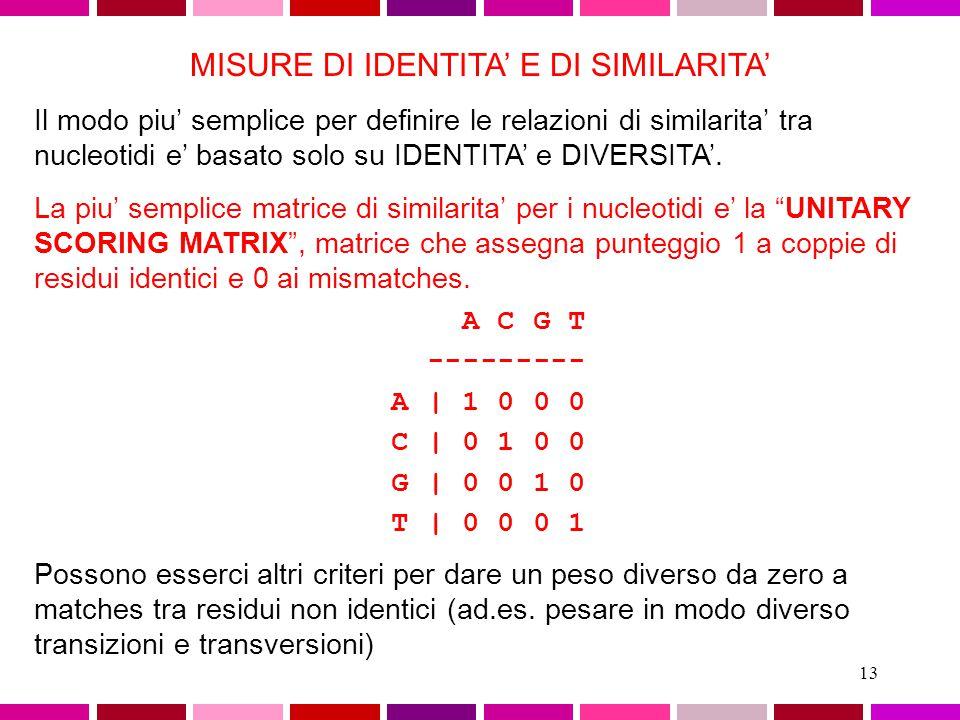 12 Un metodo molto semplice ed utile per la comparazione di due sequenze e' quello della MATRICE DOTPLOT A|X X X T| X X G| X T| X X A T C A C T G T A C| X | | | | | | | A|X X X A T C A - - G T A C| X T| X X A|X X X +------------------- A T C A G T A