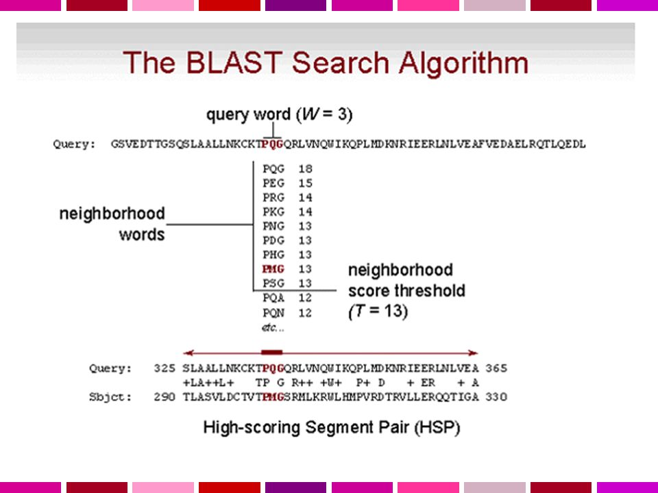 34 BLAST Basic Local Alignment Search Tool (Altschul 1990) L' algoritmo di BLAST e' euristico e opera: 1Tagliando le sequenze da comparare in piccoli