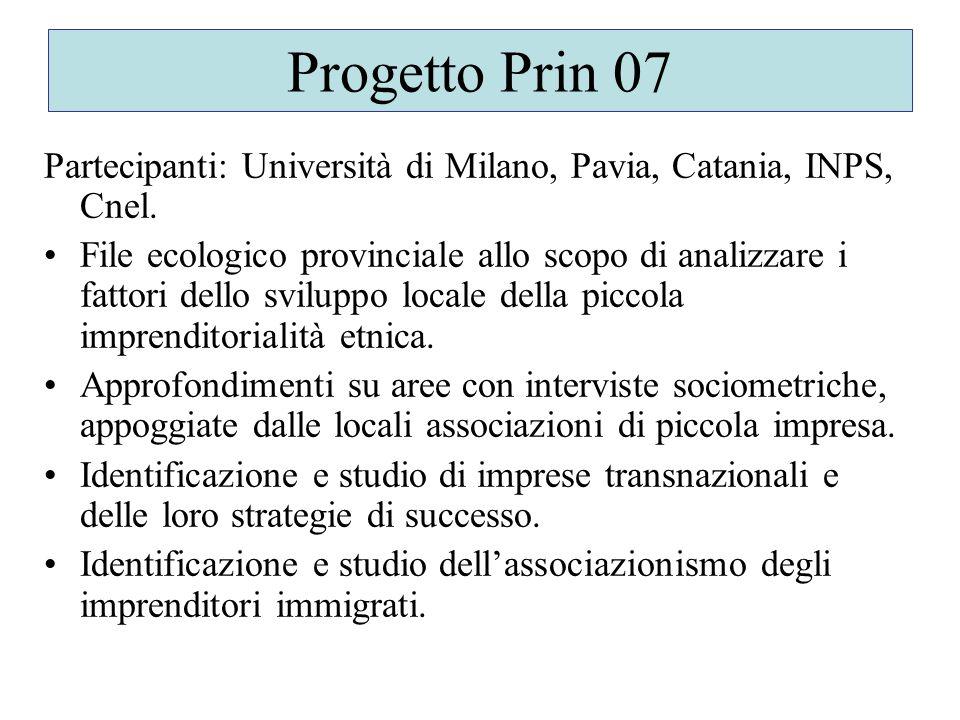 Progetto Prin 07 Partecipanti: Università di Milano, Pavia, Catania, INPS, Cnel.