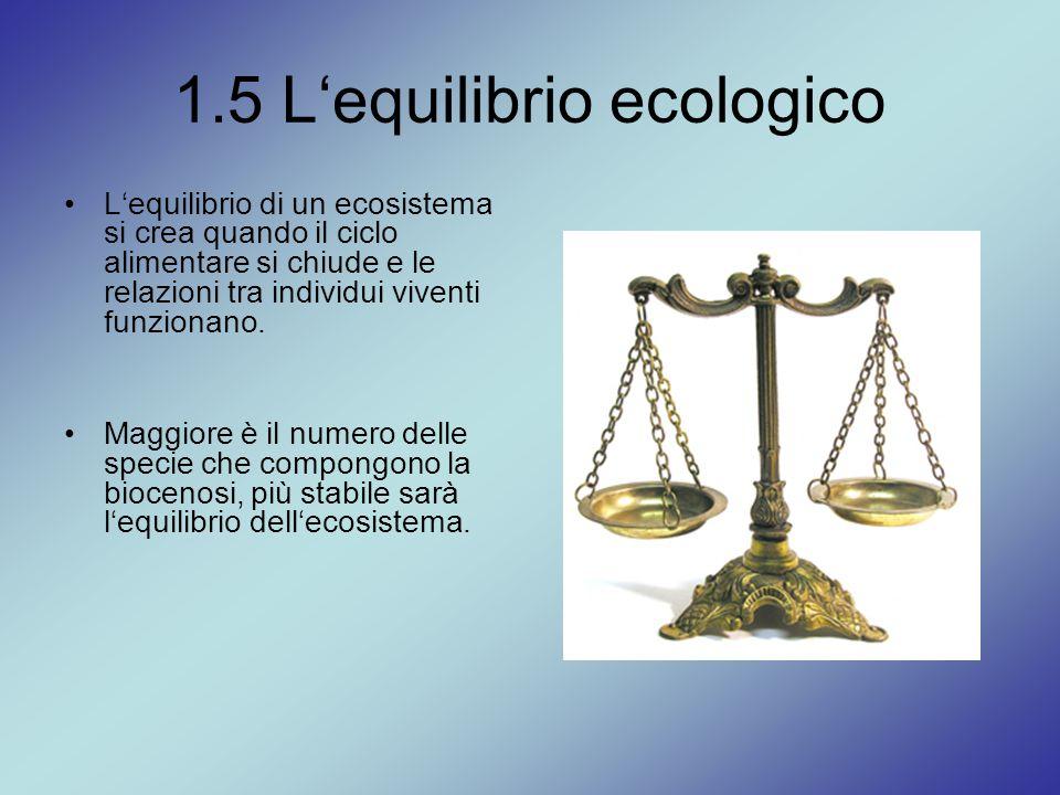 1.5 L'equilibrio ecologico L'equilibrio di un ecosistema si crea quando il ciclo alimentare si chiude e le relazioni tra individui viventi funzionano.