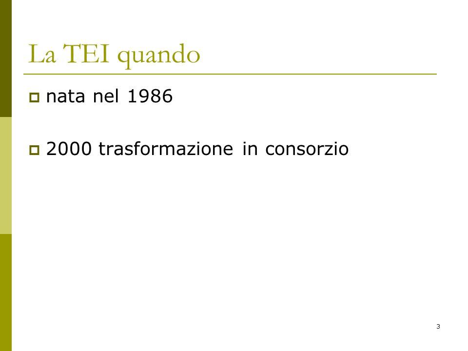 3 La TEI quando  nata nel 1986  2000 trasformazione in consorzio